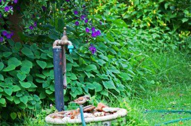 Grifos para jardín